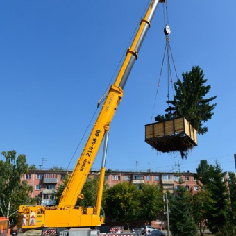 Вес дерева вместе с коробом около 50 тонн